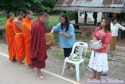 Mönche in Thailand sammeln Gaben