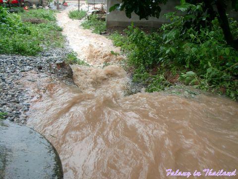 Regenzeit in Thailand - Überschwemmung des Fussweges