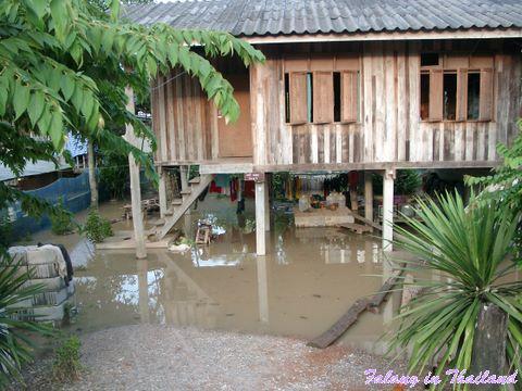Regenzeit in Thailand - Überschwemmung unter dem Haus