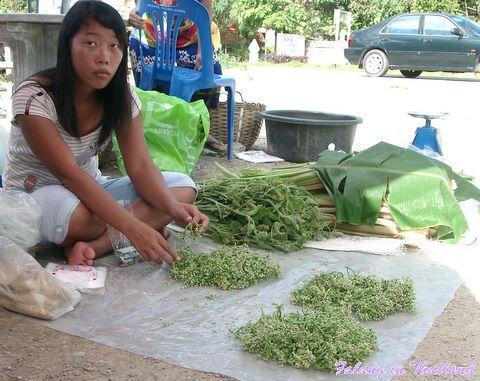 Thailändischer Markt - Grünzeug