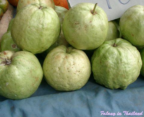 Falang - Guave - Farang - Frucht