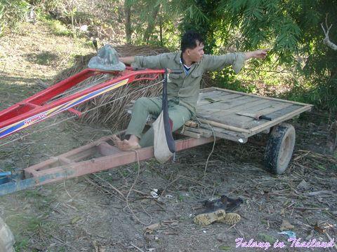 Thailändischer Traktor - Anhänger